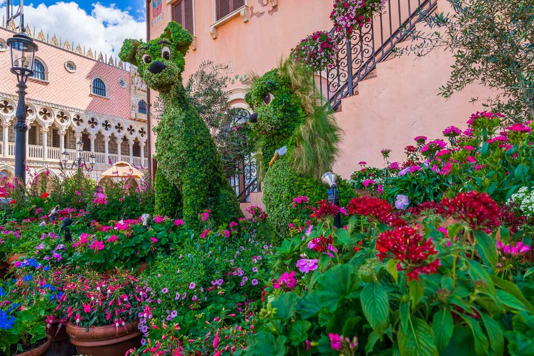 Flower and Garden Festival - Lady and the Tramp
